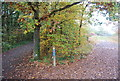 TR1263 : Cycle path and footpath junction, Clowes Wood by N Chadwick