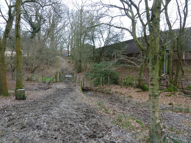 Footpath approaching Londonderry Farm