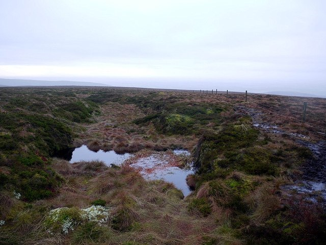 Boggy ponds west of Cold Fell