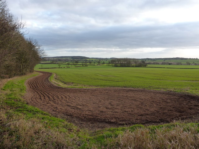 The turning point at the end of the gallops