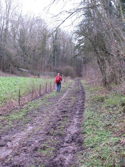 Track in Howl Dale