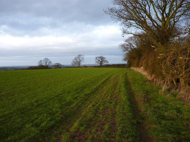 The bridleway towards Childpit Lane
