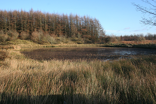 Pond on Fauldhouse Moor