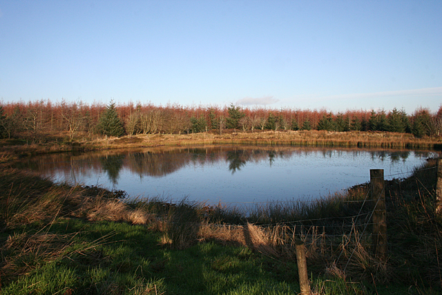 Pond on Falla Hill