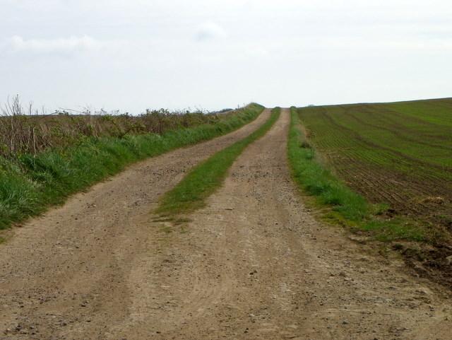 Track near Boarhills
