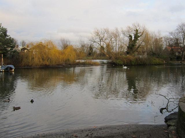 River Thames, Thames Ditton