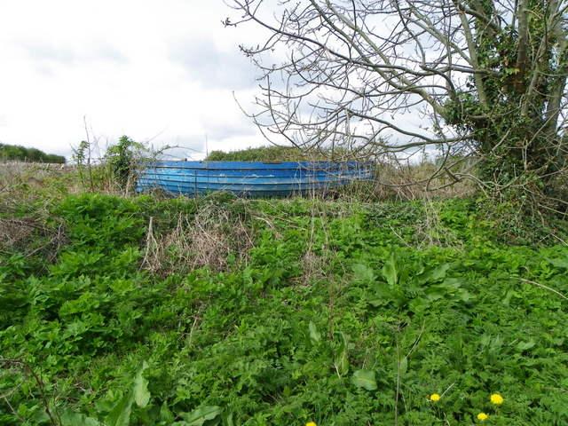 Boat in the hedge, Boarhills