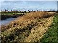 TA0832 : By the River Hull by Derek Harper