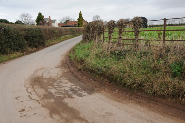 Road near Lower Ruxton Farm