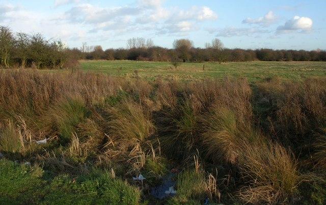 Land beside Thomas Clarkson Way