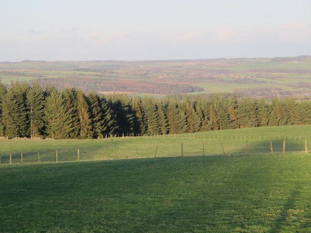 Farmland and woodland northeast of Fell House