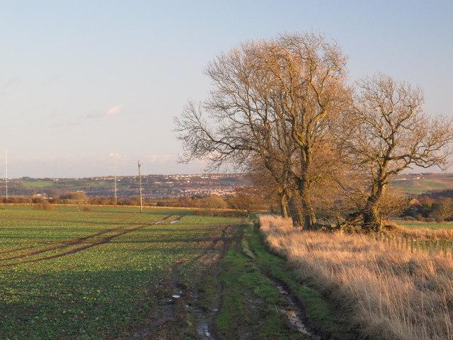 Farmland northwest of Unthank