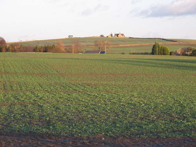 Farmland west of Kiln Pit Hill (2)
