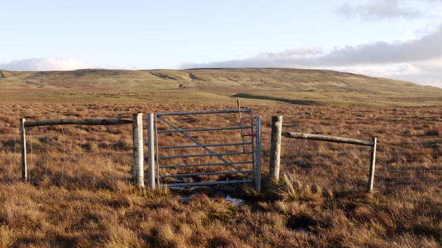 Gate in fence south of Charity Pasture