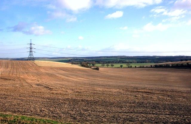 Fields near Moulsford