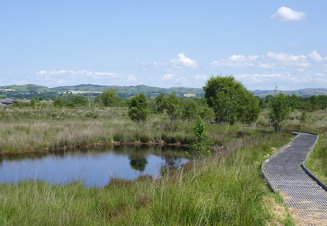 Pool and boardwalk on Cors Caron, Ceredigion