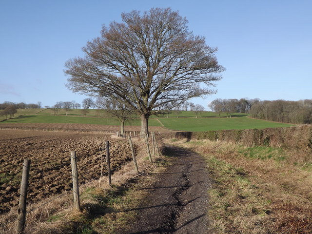 Bridleway by Mill Cottages