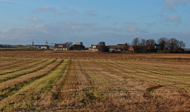 Stubble Field, Shields Farm