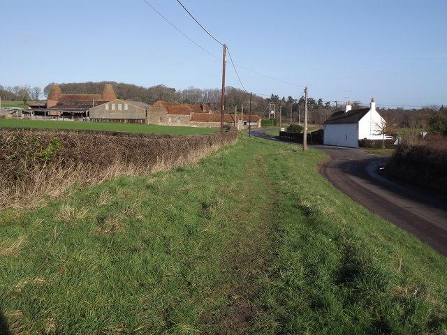 Pitt Lane