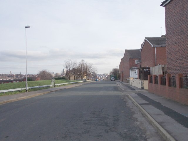 Albion Avenue - viewed from Model Terrace