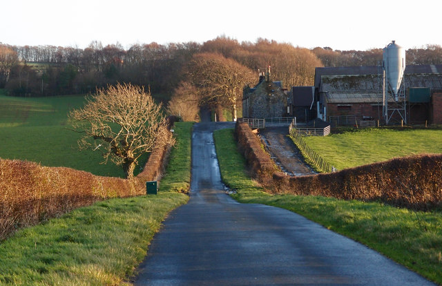 Minor Road, Low Wardneuk Farm