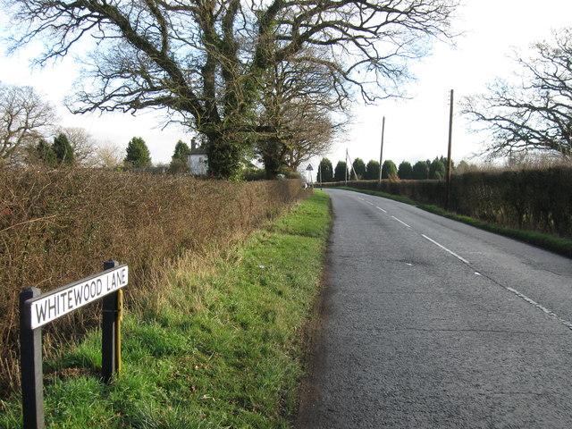 Whitewood Lane, Horne