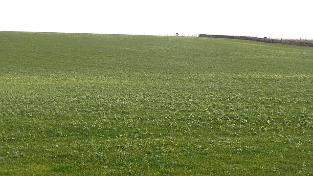 Arable land, Coldingham