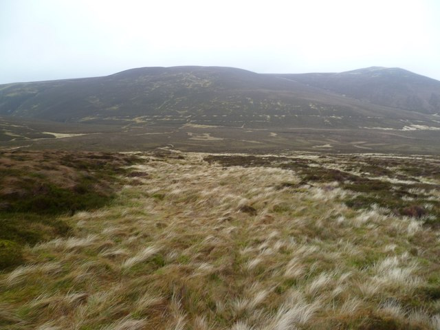 On Hare Crag