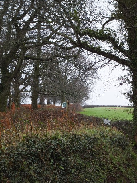 Footpath to Gogwell and Crown Castle mast site