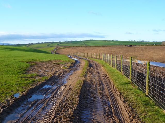 Track and farmland, Kirkoswald