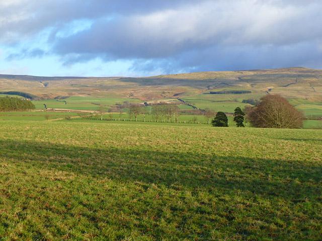 Pasture, Glassonby