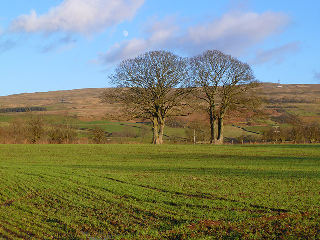 Farmland, Glassonby