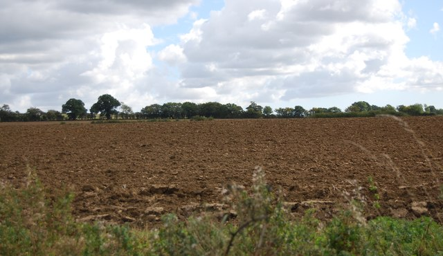 Ploughed field by Henley Rd
