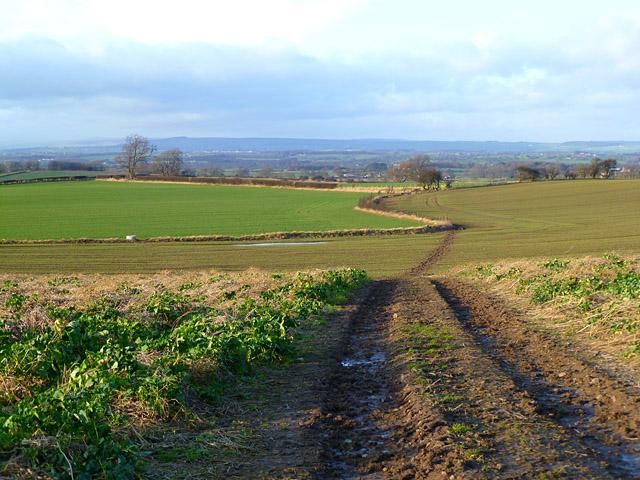 Farmland, West Layton