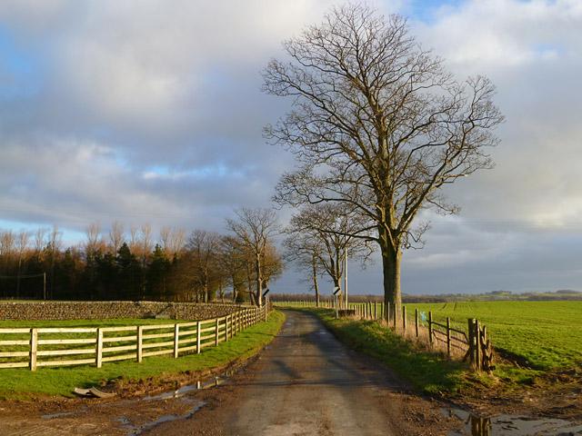 Road, West Layton