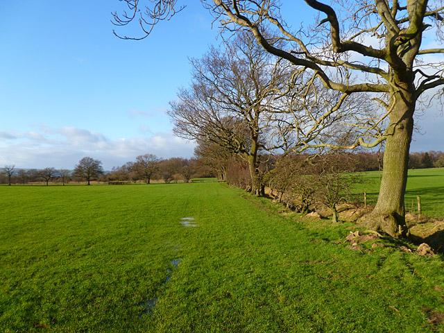 Farmland, Carkin