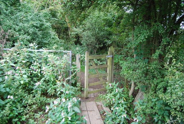 Gate on the MVW