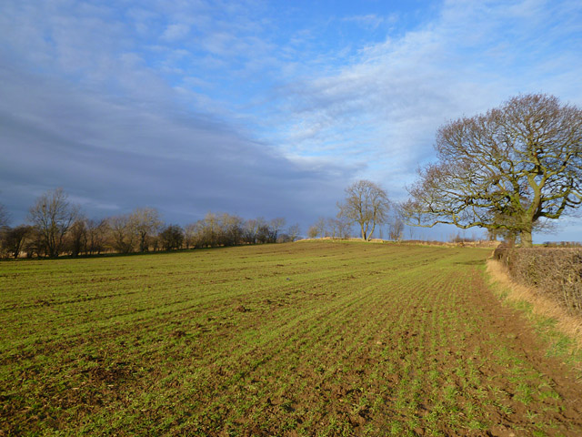 Farmland, Scorton