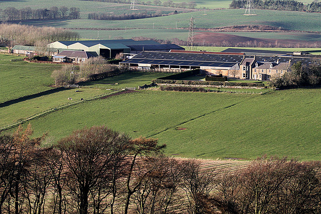 Fans Farm
