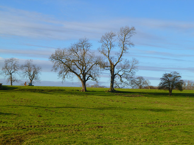 Pasture, Uckerby