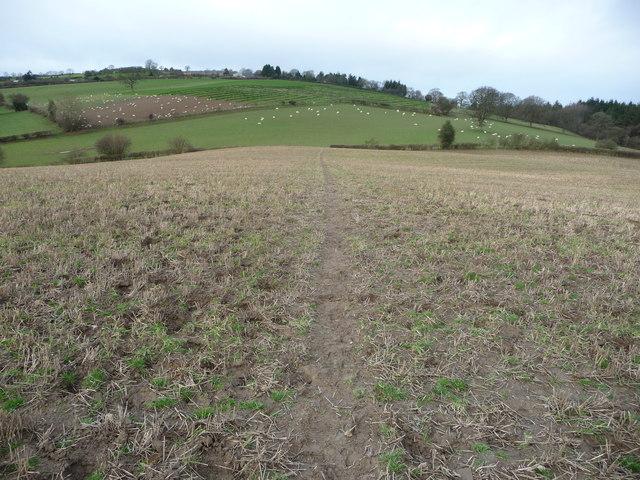 Footpath across fields near Bishop's Castle