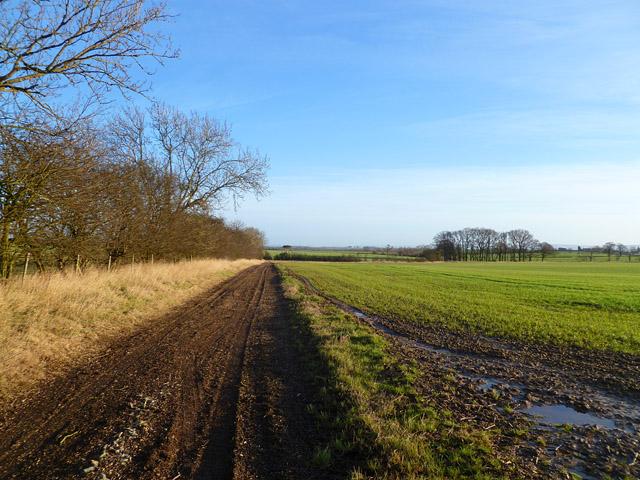 Farmland and track, Scorton