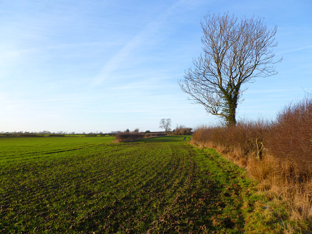 Farmland, North Cowton