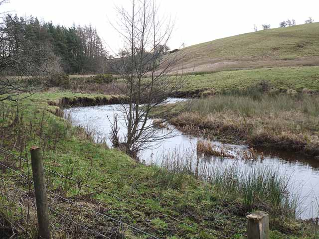 The infant River Wansbeck