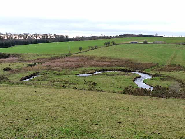 Meander on the River Wansbeck