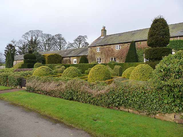 Topiary at Herterton House Gardens