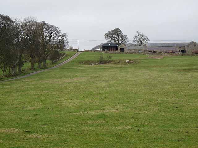 Tut Hill Farm