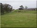 NZ0288 : Tut Hill Farm by Oliver Dixon