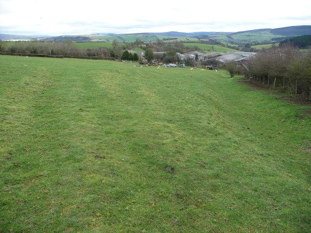 Field above Upper Woodbatch farm near Bishop's Castle