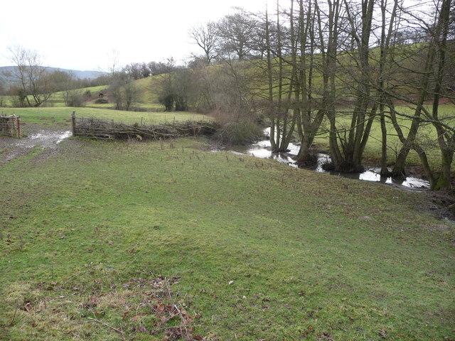 Stream in the valley bottom